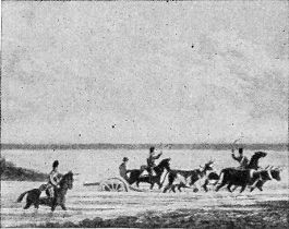 [Hauling Cannon during the War of 1812]